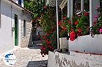 Poros Lefkados - Mikros Gialos Photo 39 - Lefkada (Lefkas) - Photo GreeceGuide.co.uk