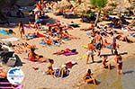 Paradise Beach Mykonos (Kalamopodi) | Greece | Greece  Photo 15 - Photo GreeceGuide.co.uk