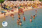 Paradise Beach Mykonos (Kalamopodi) | Greece | Greece  Photo 17 - Photo GreeceGuide.co.uk