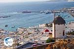 Mykonos town (Chora) | Greece | Greece  Photo 84 - Photo GreeceGuide.co.uk