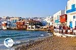 Mykonos town (Chora) | Greece | Greece  Photo 97 - Photo GreeceGuide.co.uk