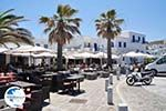 Naoussa Paros | Cyclades | Greece Photo 19 - Photo GreeceGuide.co.uk