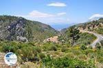 Somewhere between Kambos and Karlovassi - Island of Samos - Photo GreeceGuide.co.uk