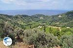 Op the route Agios Konstandinos - Manolates - Island of Samos - Photo GreeceGuide.co.uk