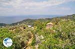 near Manolates - Island of Samos - Photo GreeceGuide.co.uk
