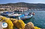 The Fishing boats at The harbour of Vathy (Samos town) - Island of Samos - Photo GreeceGuide.co.uk