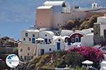 Oia Santorini (Thira) - Photo 16 - Photo GreeceGuide.co.uk