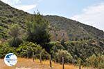 From Potos to Skala Maries | Thassos | Photo 8 - Photo GreeceGuide.co.uk