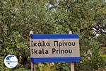 Prinos and Skala Prinos | Thassos | Photo 6 - Photo GreeceGuide.co.uk