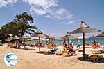 Skala Rachonis | Thassos | Photo 7 - Photo GreeceGuide.co.uk