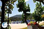 Makryammos - beach near Limenas (Thassos town) | Photo 4 - Photo GreeceGuide.co.uk