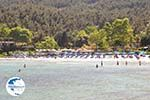 Makryammos - beach near Limenas (Thassos town) | Photo 18 - Photo GreeceGuide.co.uk