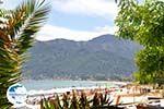 Golden Beach - Skala Panagia - Chrissi Ammoudia | Thassos | Photo 23 - Photo GreeceGuide.co.uk