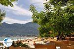 Golden Beach - Skala Panagia - Chrissi Ammoudia | Thassos | Photo 24 - Photo GreeceGuide.co.uk