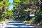 Koiliomenos (Kiliomenos) Zakynthos | Greece  nr1 - Photo GreeceGuide.co.uk