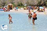 Elafonisi (Elafonissi) Crete - Greece - Photo 92 - Photo GreeceGuide.co.uk