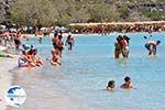 Elafonisi (Elafonissi) Crete - Greece - Photo 148 - Photo GreeceGuide.co.uk