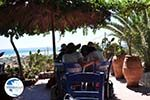 Elafonisi (Elafonissi) Crete - Greece - Photo 178 - Photo GreeceGuide.co.uk