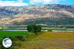 Amfilochia - Prefecture  Aetoloakarnania -  Photo 2 - Photo GreeceGuide.co.uk