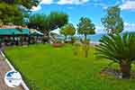 Amfilochia - Prefecture  Aetoloakarnania -  Photo 17 - Photo GreeceGuide.co.uk