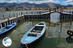 Etoliko - Prefecture  Aetoloakarnania -  Photo 16 - Photo GreeceGuide.co.uk