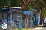 Mytikas - Prefecture  Aetoloakarnania -  Photo 20 - Photo GreeceGuide.co.uk