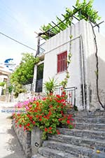 Avlonari | Euboea Greece | Greece  - Photo 006 - Photo GreeceGuide.co.uk