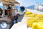 Orei (Oreoi) North-Euboea Greece | Photo 4 - Photo GreeceGuide.co.uk