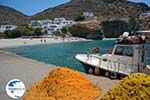 Angali Folegandros - Agali beach - Cyclades - Photo 134 - Photo GreeceGuide.co.uk