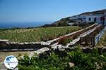 Ano Meria Folegandros - Island of Folegandros - Cyclades - Photo 203 - Photo GreeceGuide.co.uk