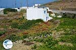 Ano Meria Folegandros - Island of Folegandros - Cyclades - Photo 230 - Photo GreeceGuide.co.uk