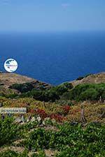 Ano Meria Folegandros - Island of Folegandros - Cyclades - Photo 232 - Photo GreeceGuide.co.uk