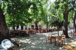 Lafkos Pilion - Magnesia - Thessaly - Greece  002 - Photo GreeceGuide.co.uk