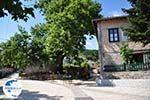 Centrale square Monodendri - Zagori Epirus - Photo GreeceGuide.co.uk