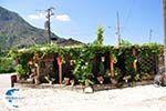 Restaurant in Vikos - Zagori Epirus - Photo GreeceGuide.co.uk