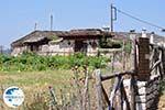 Beautiful huis in Vikos Village- Zagori Epirus - Photo GreeceGuide.co.uk