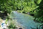 Voidomatis River near Aristi Photo 4 - Zagori Epirus - Photo GreeceGuide.co.uk