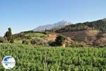 Dit is the Holly Berg Athos Photo 2 | Mount Athos Area Halkidiki | Greece - Photo GreeceGuide.co.uk