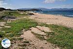 Sandy beach Ierissos Photo 10 | Mount Athos Area Halkidiki | Greece - Photo GreeceGuide.co.uk