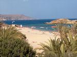 Vai Crete - Lassithi Prefecture - Photo 4 - Photo GreeceGuide.co.uk
