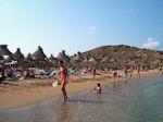 Vai Crete - Lassithi Prefecture - Photo 7 - Photo GreeceGuide.co.uk