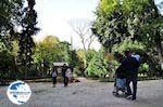 Ethnikos Kipos - the National Tuinen of Athens - Photo GreeceGuide.co.uk