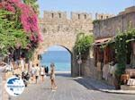 Rhodes town - Dodecanese - Greece Guide photo 17 - Photo GreeceGuide.co.uk