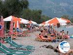 Small pebble beach Dassia (Dasia - Corfu) 3 - Photo GreeceGuide.co.uk