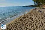 Elia Beach Halkidiki - GreeceGuide.co.uk photo 4 - Photo GreeceGuide.co.uk