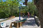 Elia Beach Halkidiki - GreeceGuide.co.uk photo 10 - Photo GreeceGuide.co.uk
