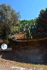 Moni Theoktistis near Kampos Ikaria | Avlaki Ikaria Photo 1 - Photo GreeceGuide.co.uk