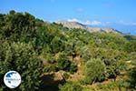 Mountainous Raches Ikaria | Greece | Photo 9 - Photo GreeceGuide.co.uk