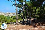 Mountainous Raches Ikaria | Greece | Photo 26 - Photo GreeceGuide.co.uk