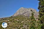 Myrties - Island of Kalymnos -  Photo 1 - Photo GreeceGuide.co.uk